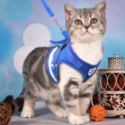 Нагръдник с каишка за безопасно разхождане на домашен любимец, малко или средно коте или куче.
